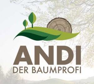 andi1